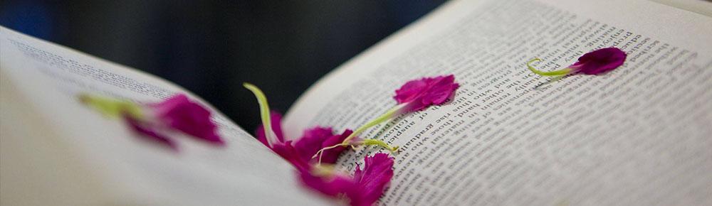 czytanie o sukcesie nic nie daje